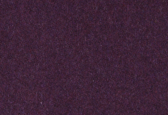 Wooly 71 plum
