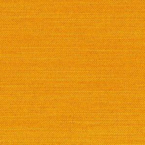Elegance-Burned-curry-507